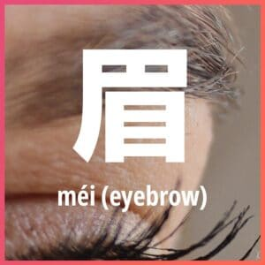 Chinese character: eyebrow