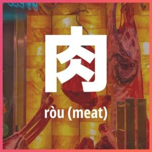 Chinese character: meat