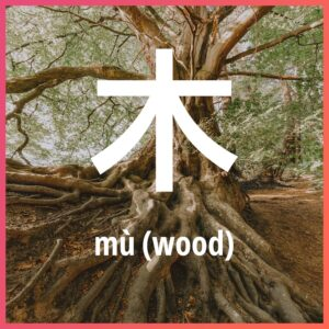 Chinese character: wood