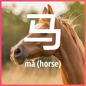 Chinese character: horse