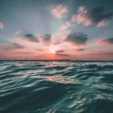 sea copy