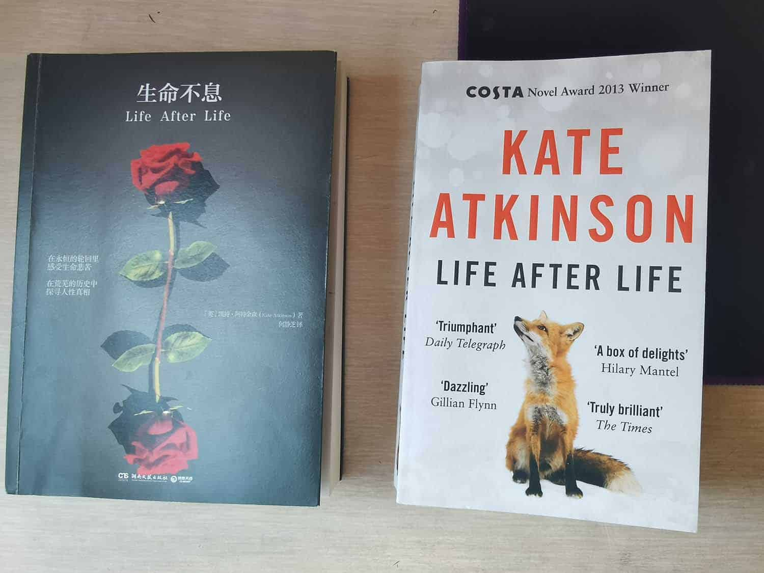 Life after life Chinese book